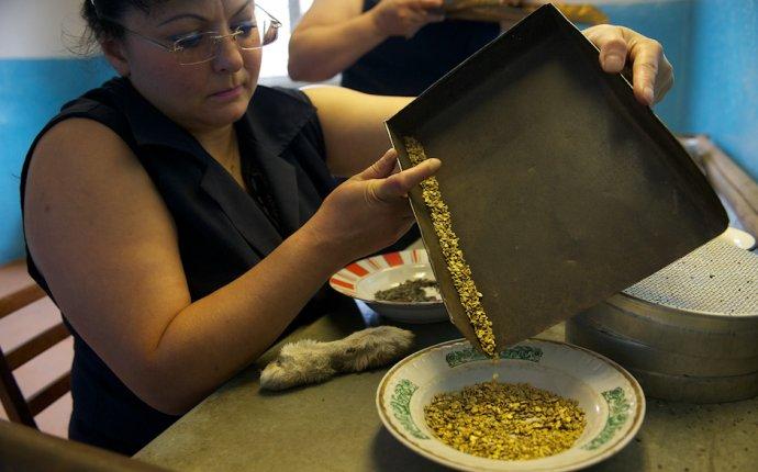 Любительская золотодобыча. Как это происходит в XXI веке в России