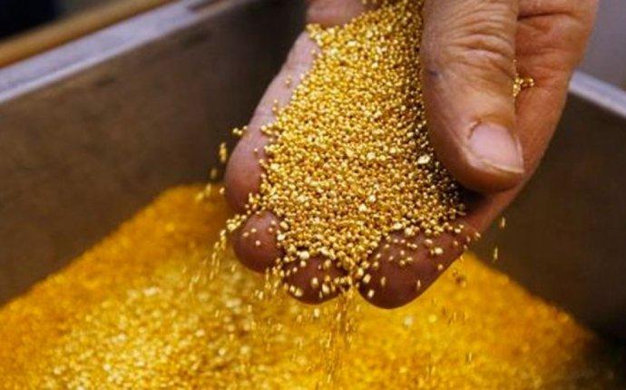 Ужесточить наказание за незаконную добычу золота предложили в